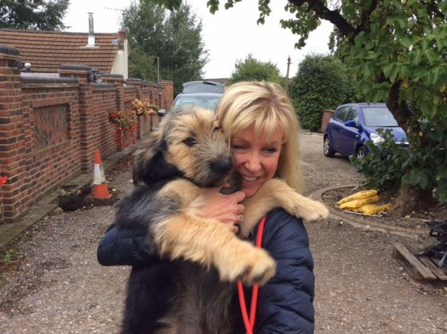 What to expect when you bring your Romanian Rescue Dog home – Part III