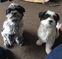 Billy & Marnie